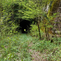 Tunnel du Sauvage